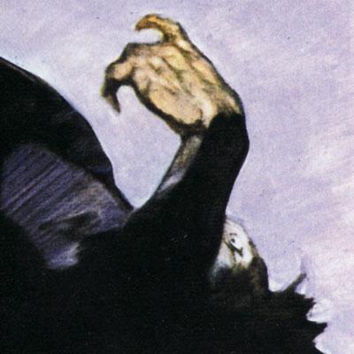 Frazetta-Detail-Loser