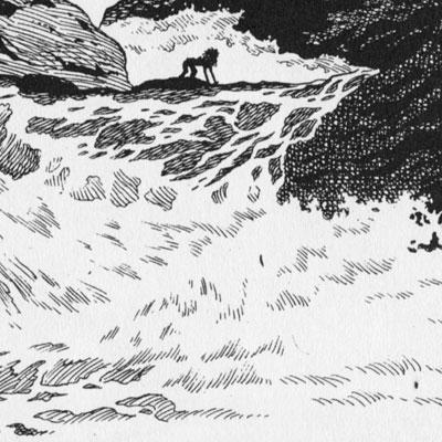 Tezuka-Detail-Rapids2