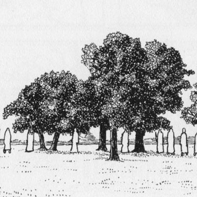 Tezuka-Detail-Trees
