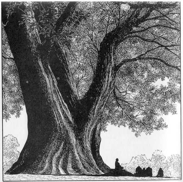 Tezuka-Tree